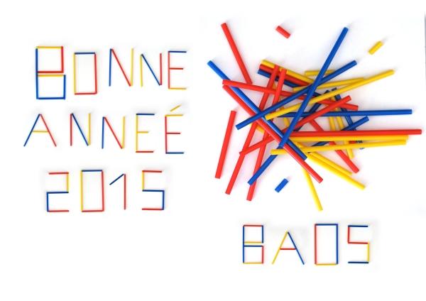 VOEUX-BAOS-2015